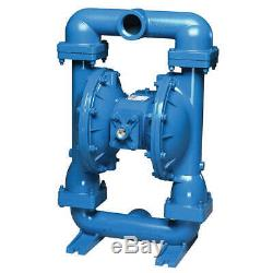 Diaphragm Pump, Air Operated, Cast-Iron S20B1I1EANS000